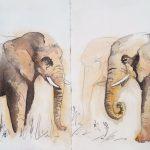 Urban Sketching Elefanten Hamburg