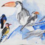 Urban Sketching Hagenbecks Tierpark