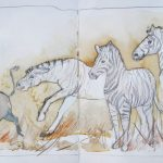 Urban Sketching Tiere Zebra