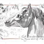 Urban Sketching Pferd