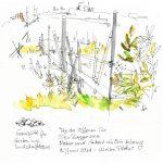 Renaturierter Baggersee vom Kieswerk Schütt mit Pflanzen und Holzsteg t